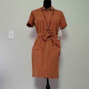 A.n.a ,American  Hazel  is the color for this dres